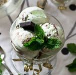 best mint chocolate chip ice cream